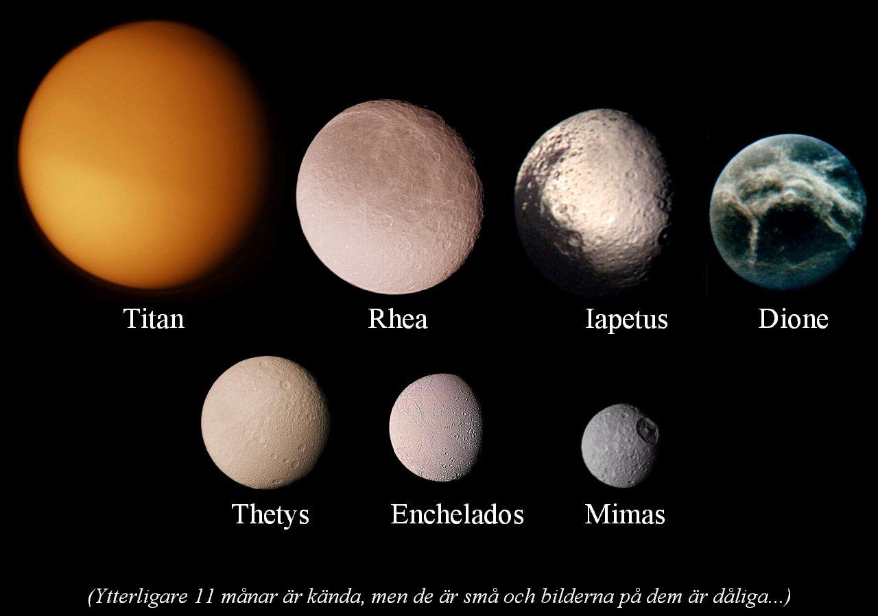 Venus månar